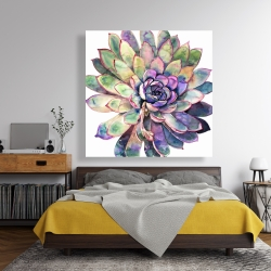 Canvas 48 x 48 - Multicolored succulent
