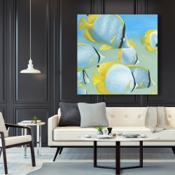Canvas 48 x 48 - Butterfly fishes