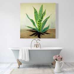 Canvas 48 x 48 - Succulent plant mother-in-law's tongue