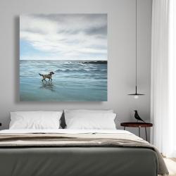 Canvas 48 x 48 - Dog on the beach