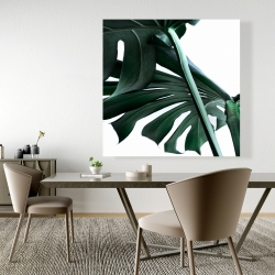 Canvas 48 x 48 - Monstera deliciosa