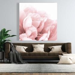 Canvas 48 x 48 - Peony flower dream