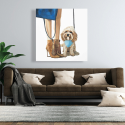 Canvas 48 x 48 - Fashionable cavoodle dog