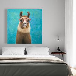 Canvas 48 x 48 - Lovable llama