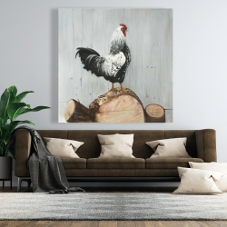 Canvas 48 x 48 - Wyandotte rooster