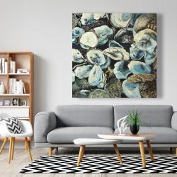 Canvas 48 x 48 - Oyster shells