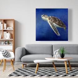 Canvas 48 x 48 - Beautiful sea turtle