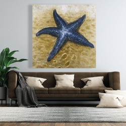 Canvas 48 x 48 - Beautiful starfish