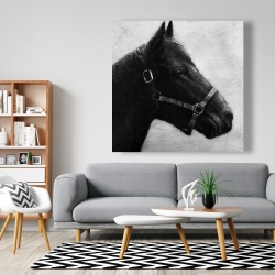 Canvas 48 x 48 - Gallopin the horse