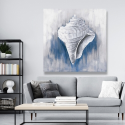 Canvas 48 x 48 - Blue conical shell