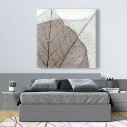 Canvas 48 x 48 - Translucent dried leaves