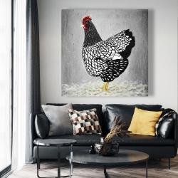 Canvas 48 x 48 - Black and white wyandotte hen