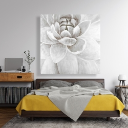 Canvas 48 x 48 - Delicate white chrysanthemum
