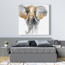 Canvas 48 x 48 - Golden elephant