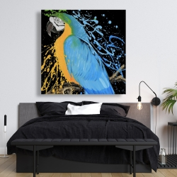 Canvas 48 x 48 - Blue macaw parrot