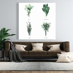 Canvas 48 x 48 - Fine herbs