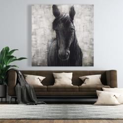 Canvas 48 x 48 - Black horse