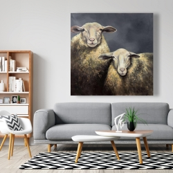 Canvas 48 x 48 - Two sheeps