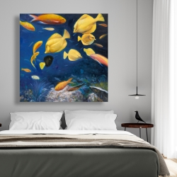 Canvas 48 x 48 - Fish under the sea
