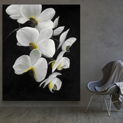 Canvas 48 x 60 - Beautiful orchids
