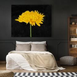 Canvas 48 x 60 - Chrysanthemum