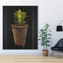 Canvas 48 x 60 - Plant of bay leaves