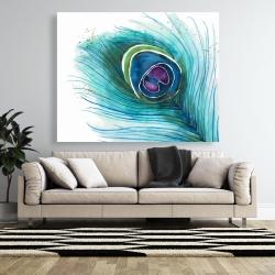Canvas 48 x 60 - Peacock feather closeup