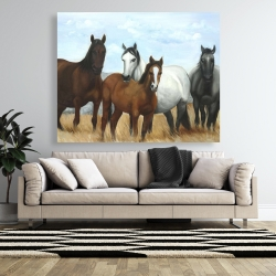 Canvas 48 x 60 - Horses in the meadow by the sun
