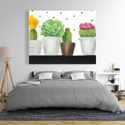 Canvas 48 x 60 - Mini cactus and succulents