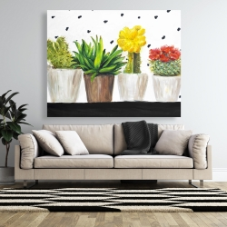 Canvas 48 x 60 - Small cactus and succulents