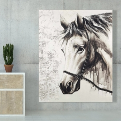 Canvas 48 x 60 - Alpha the white horse
