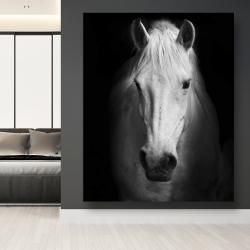 Canvas 48 x 60 - Monochrome horse