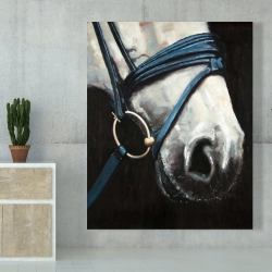 Canvas 48 x 60 - Horse with harness