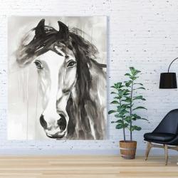 Canvas 48 x 60 - Beautiful wild horse