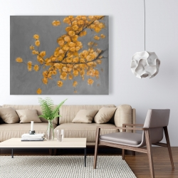 Canvas 48 x 60 - Golden wattle plant with pugg ball flowers