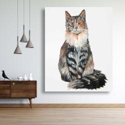 Canvas 48 x 60 - Norwegian forest cat