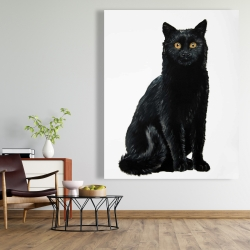 Canvas 48 x 60 - Black cat