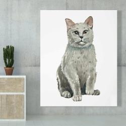 Canvas 48 x 60 - British shorthair cat