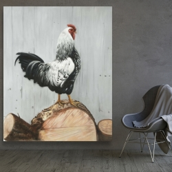 Canvas 48 x 60 - Wyandotte rooster