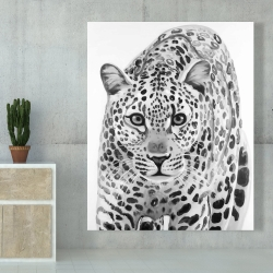 Canvas 48 x 60 - Leopard ready to attack