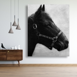 Canvas 48 x 60 - Gallopin the horse