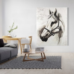 Canvas 48 x 60 - Flicka the white horse