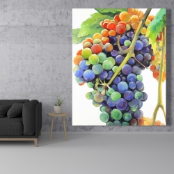 Canvas 48 x 60 - Colorful bunch of grapes