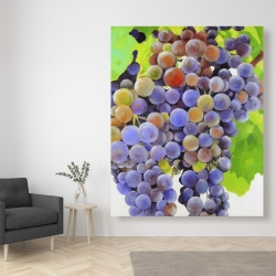Canvas 48 x 60 - Bunch of grapes