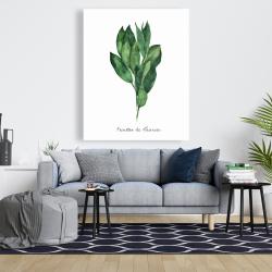 Canvas 48 x 60 -  bay leaves bundle - fr
