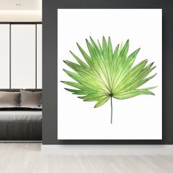 Canvas 48 x 60 - Petticoat palm