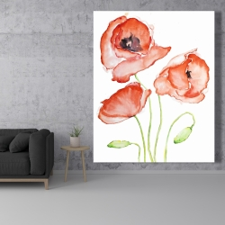 Canvas 48 x 60 - Watercolor poppies