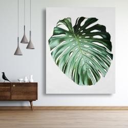 Canvas 48 x 60 - Monstera leaf