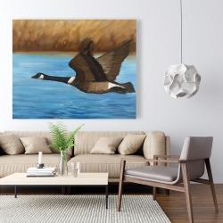 Canvas 48 x 60 - Canada goose