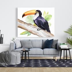 Canvas 48 x 60 - Toucan perched